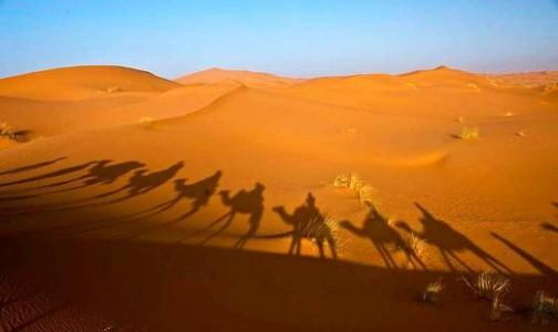 1269365171_astonishing_deserts_01_sahara