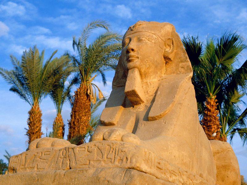 Когда откроют Египет? | Турагентство Мультипасс | 8 (499) 653-6300