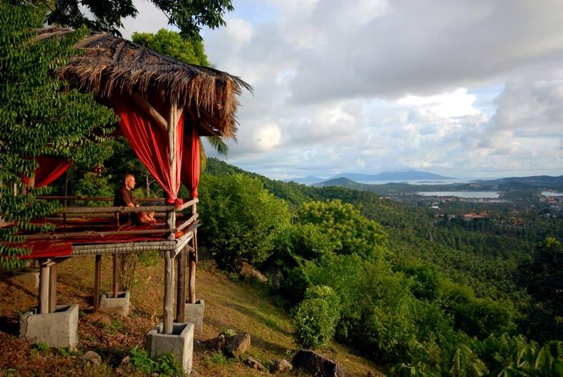 Джунгли о. Самуи | Туристическое агентство Мультипасс | (499) 653-6300