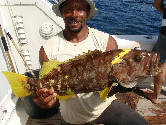 Рыбалка на Ямайке | «Мультипасс» | 8 (499) 653-6300