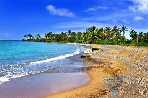 Ямайка | «Мультипасс» | 8 (499) 653-6300
