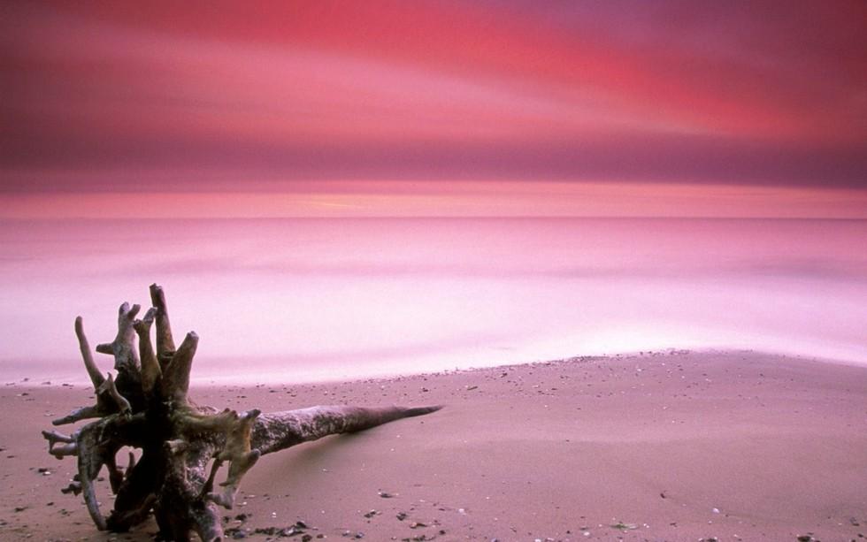 Розовый пляж на острове Харбор | Багамские острова | Турагентство Мультипасс | 8 (499) 653-6300
